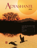 2010 Adyashanti Newsletter