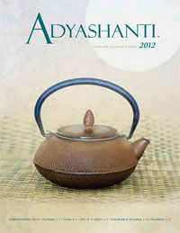 2012 Adyashanti Newsletter