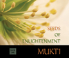 Seeds of Enlightenment