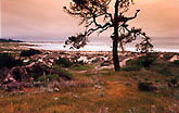 Photo of Asilomar
